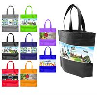 Full Color Econo Bag