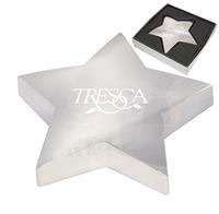 CPP-1695 - Shining Star Paper Weight
